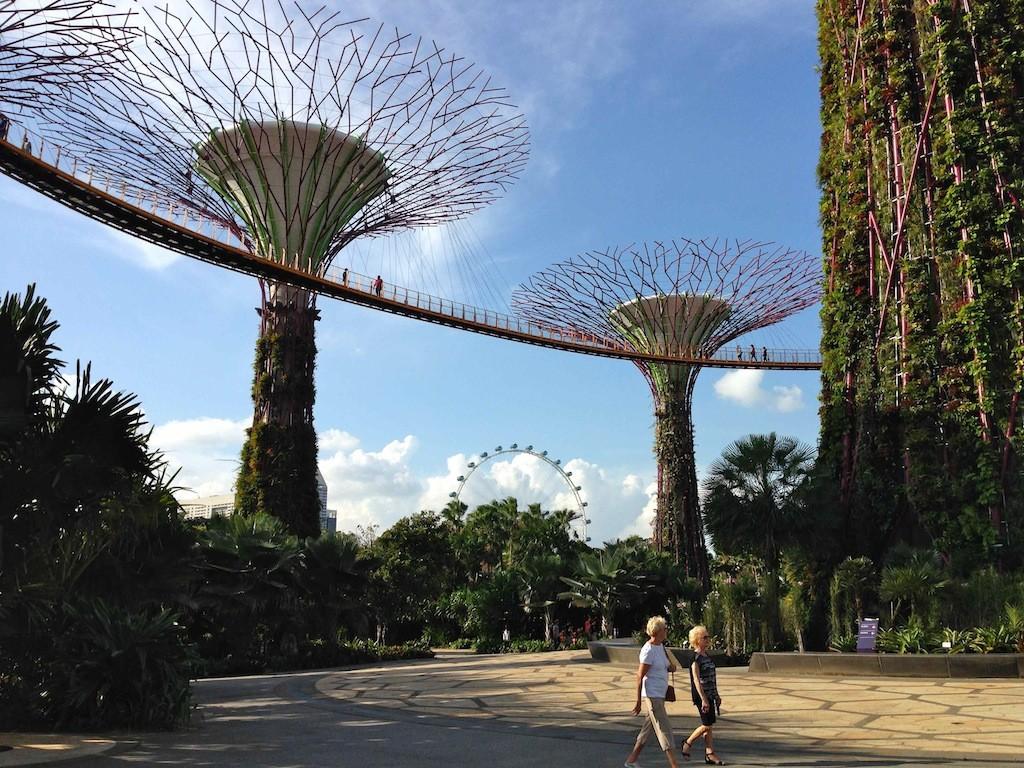 Die Supertrees in Singapurs Gardens by the Bay. Im Hintergrund: der Singapore Flyer, das größte Riesenrad der Welt.