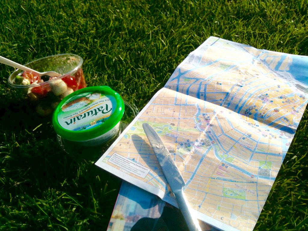 Picknick auf der Wiese geht auch allein in Amsterdam