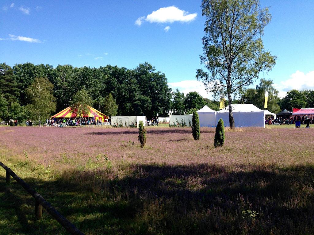 "Die Heide blüht beim ""A Summer's Tale""-Festival in der Lüneburger Heide"