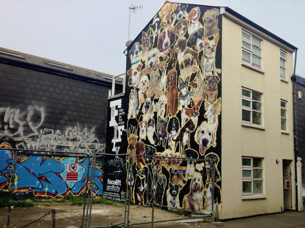 Urlaub in Brighton: Graffito in der Kensington Street