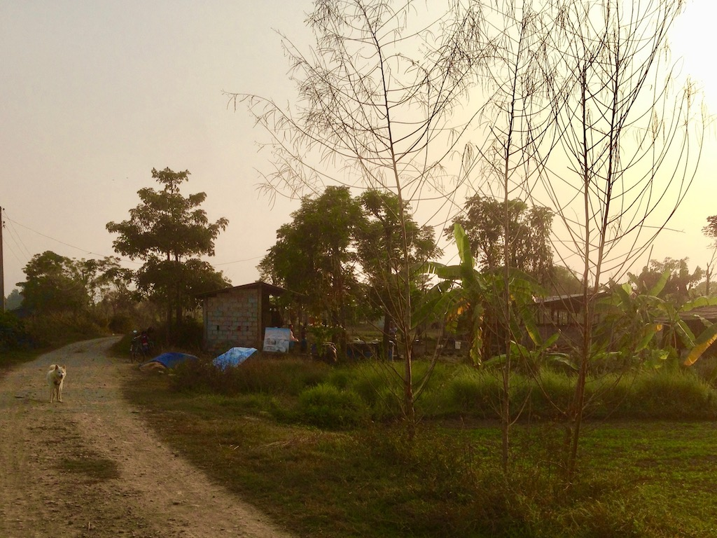 Im Tharu Community Homestay Chitwan Nationalpark Sauhara