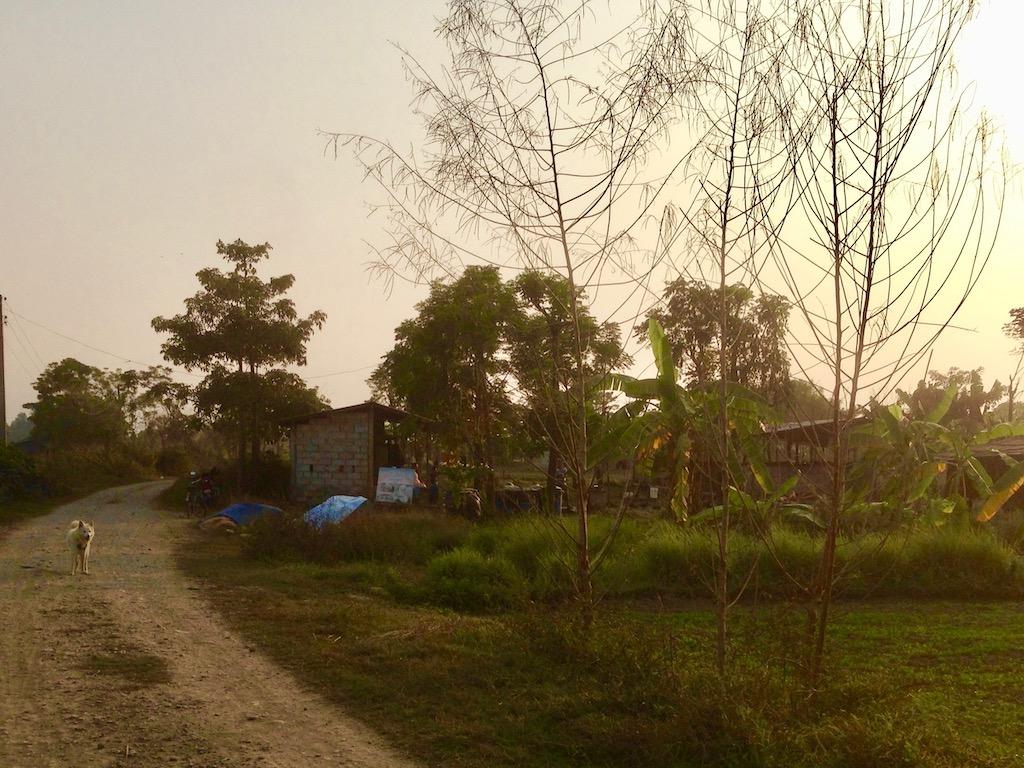 Im Tharu Community Homestay Chitwan Nationalpark Sauhara