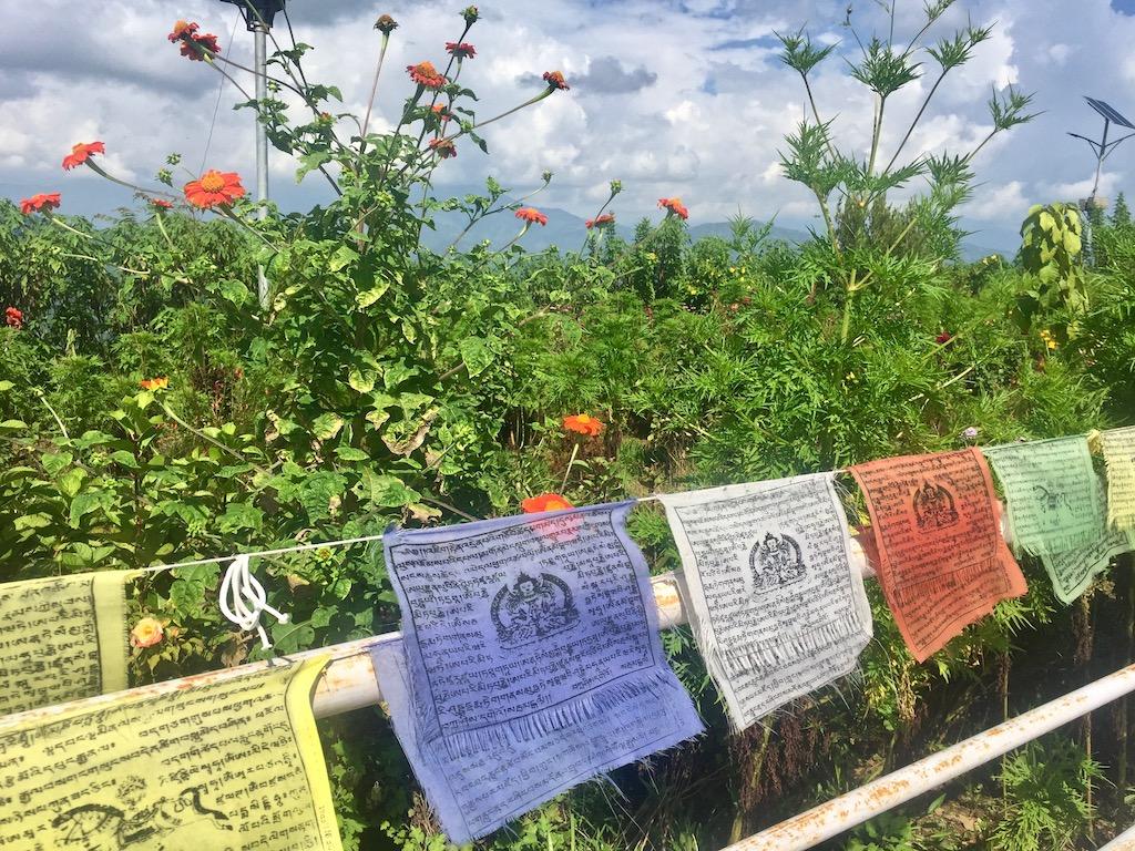 Gebetsfahnen in Pokhara Nepal