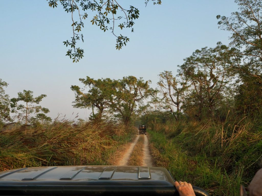 Jeep-Safari im Chitwan Nationalpark