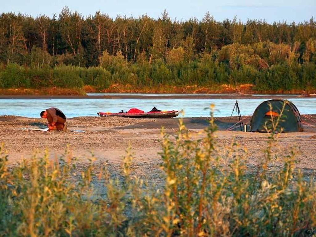 Rast am Abend am Ufer des Yukon River