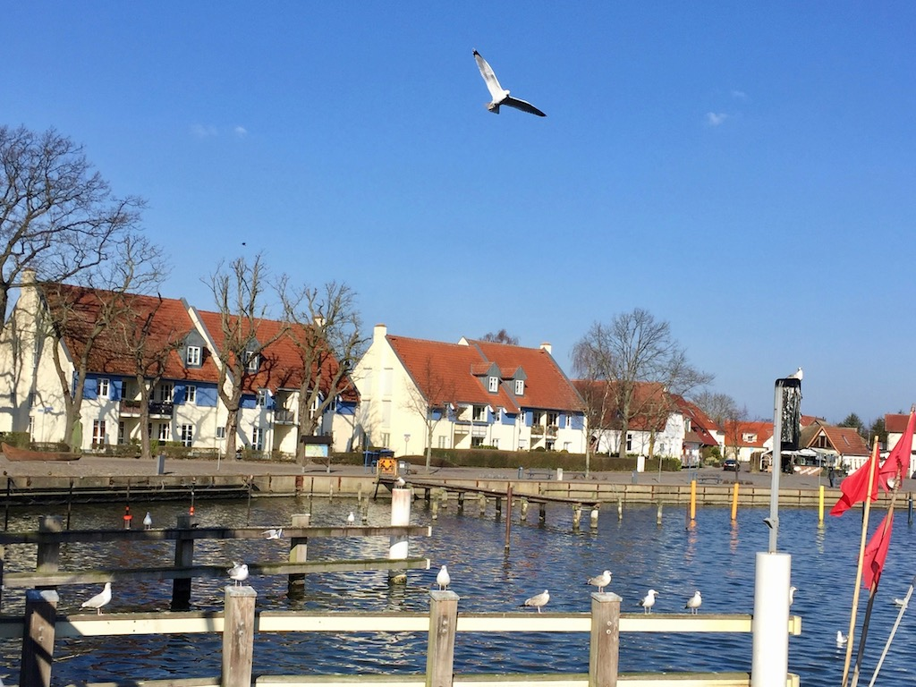 Greifswald Sehenswürdigkeiten: Wieck