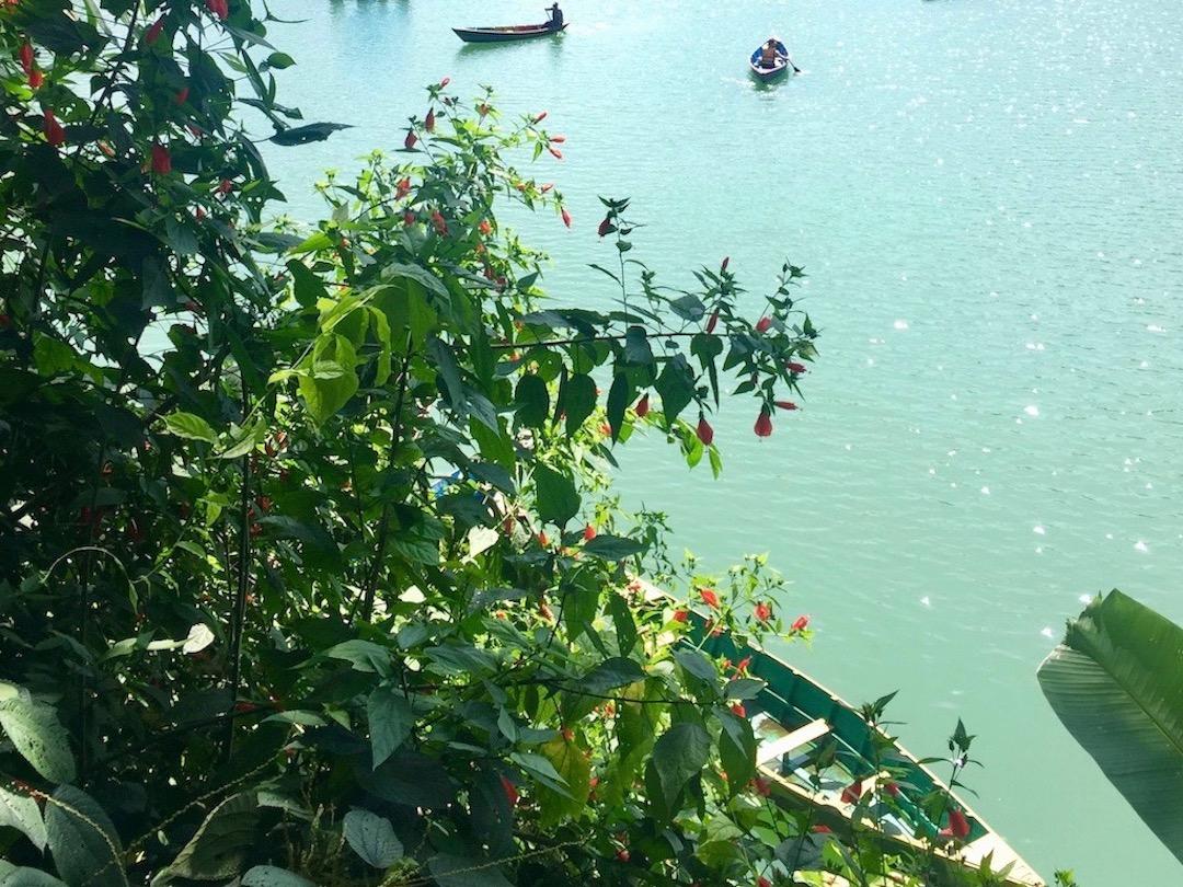 Phewa-Lake in Pokhara Nepal