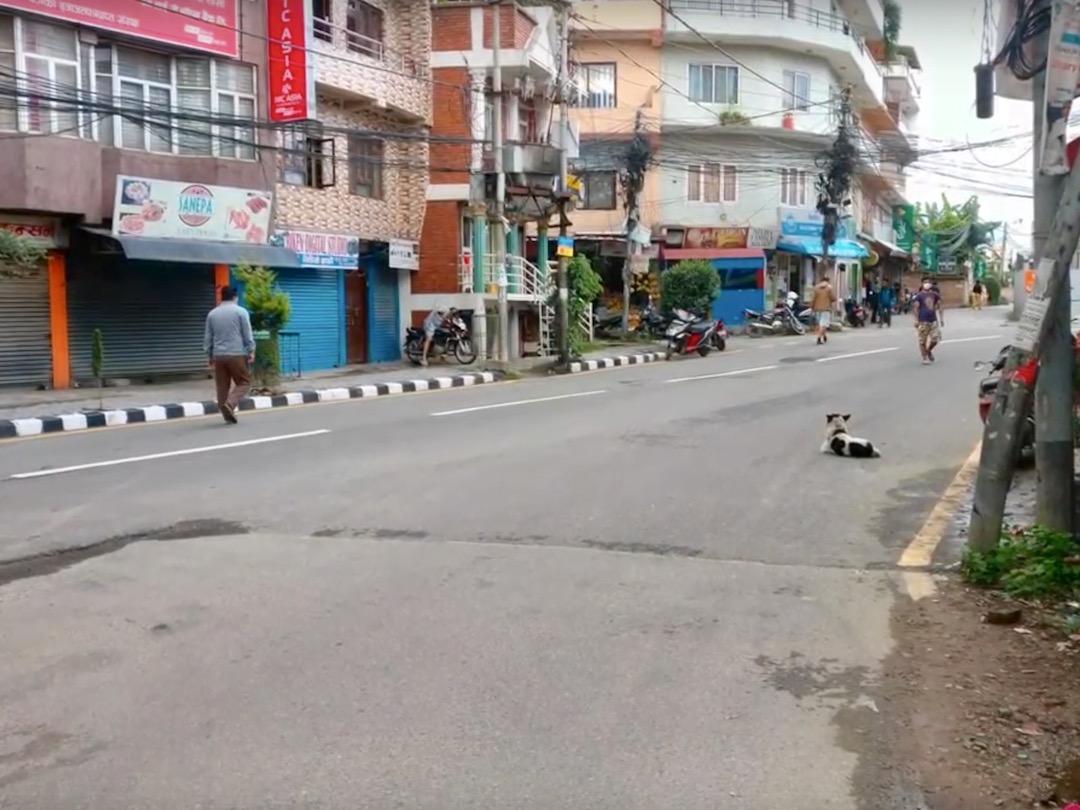 Lockdown in Nepal: Leere Straße in Sanepa, Kathmandu
